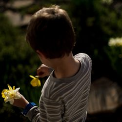 Asher Newbold, 5, picks daffodils from the front yard at his home in Kaysville on Tuesday, April 7, 2020.