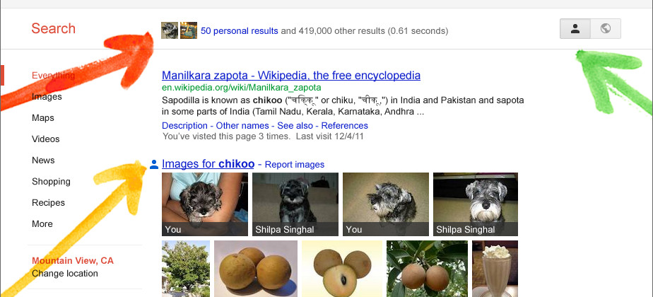 Google Search, plus Your World
