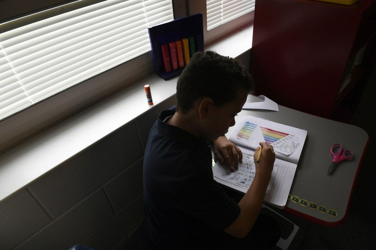 Denver Language School student Xavier Templeton, 10, learns about the five animal kingdoms.