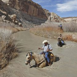 Rick Stott crosses the river while riding horses down the Little Grand Canyon of the San Rafael Swell  Saturday, April 2, 2011, in the San Rafael Swell in Central Utah.