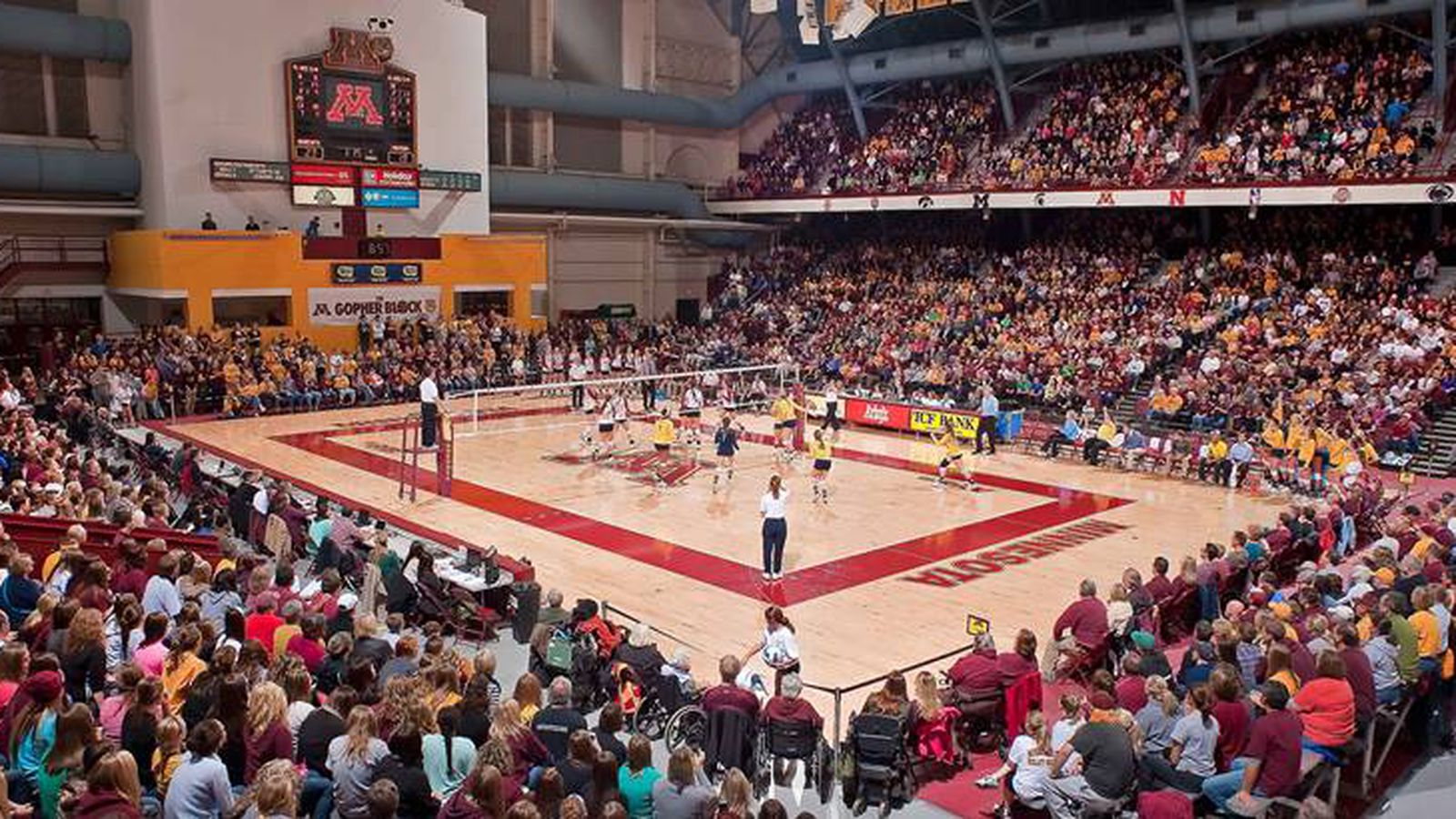 Minnesota Volleyball - The Nugz Remind You To Go Support The Gophers! - The Daily Gopher