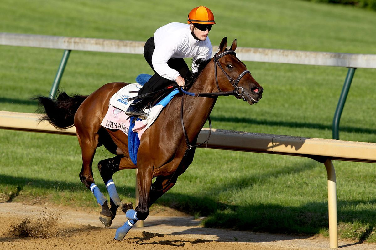 LOUISVILLE, KY - APRIL 30:  Kathmanblu runs during the morning exercise session in preparation for the 137th Kentucky Oaks at Churchill Downs on April 30, 2011 in Louisville, Kentucky.  (Photo by Matthew Stockman/Getty Images)