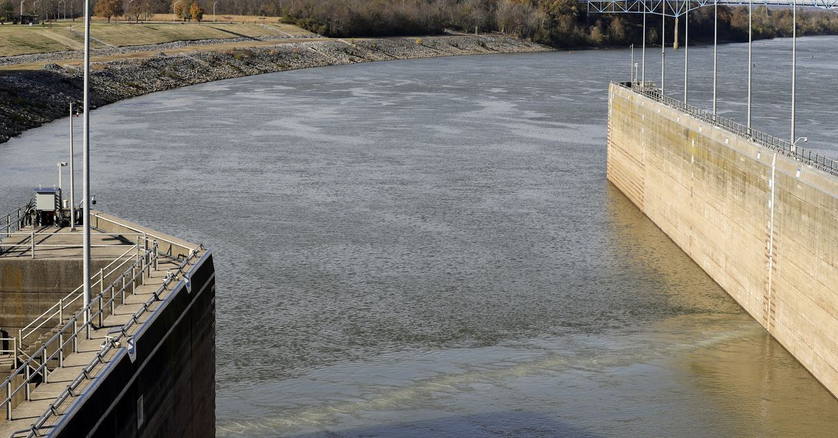 Asian carp $8 million question: Why won't Illinois get serious about beating back invasive species? - Chicago Sun-Times