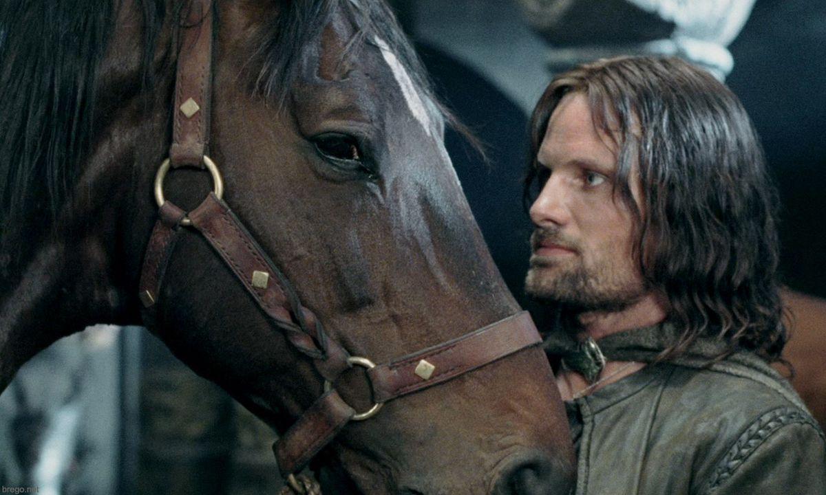 Aragorn looking at Brego