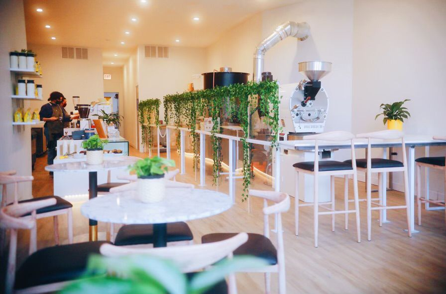A bright white cafe space with green plants.