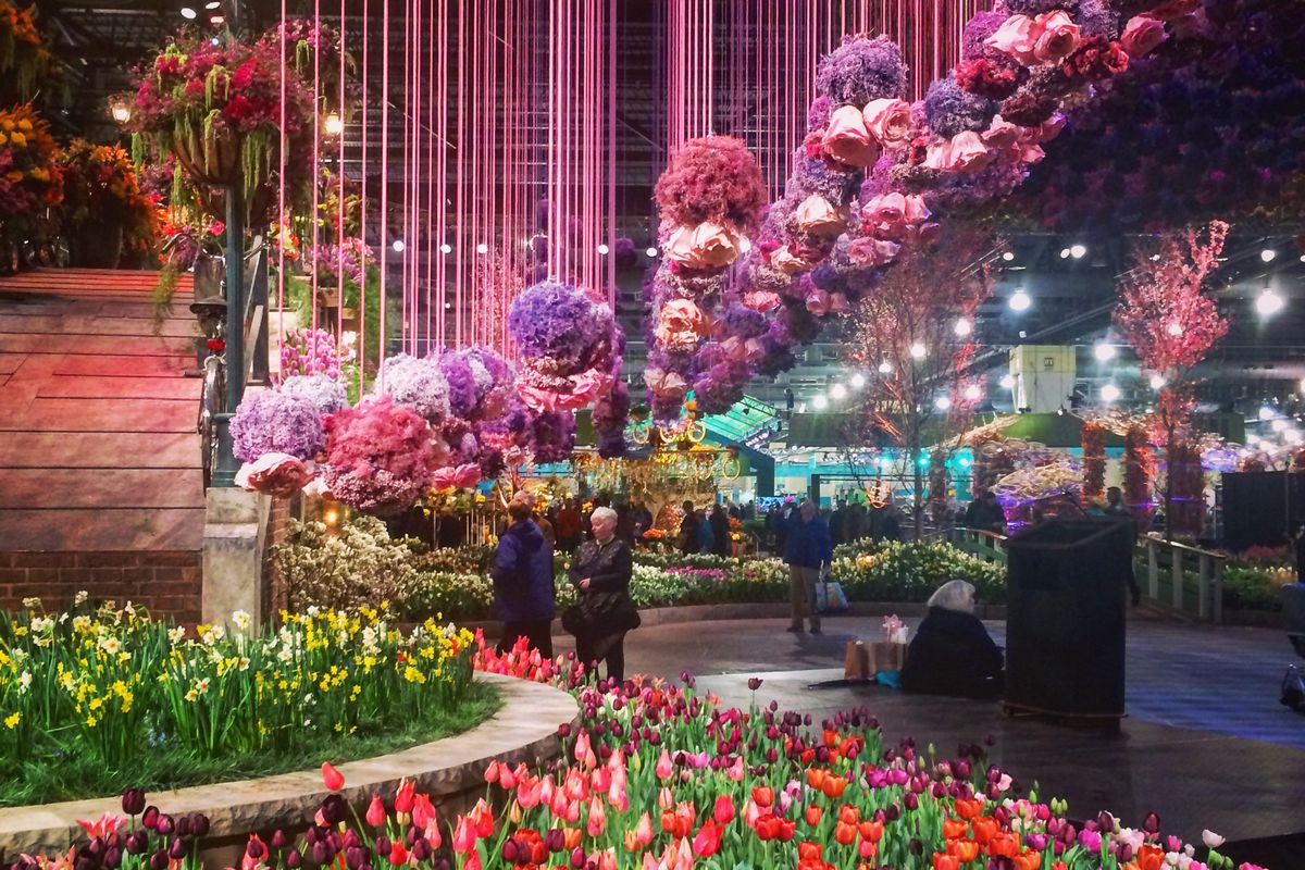 The Philadelphia Flower Show in 18 magical Instagram photos Curbed Philly