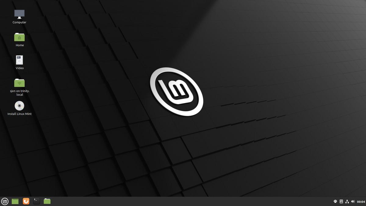 You can run Mint from an external USB drive.