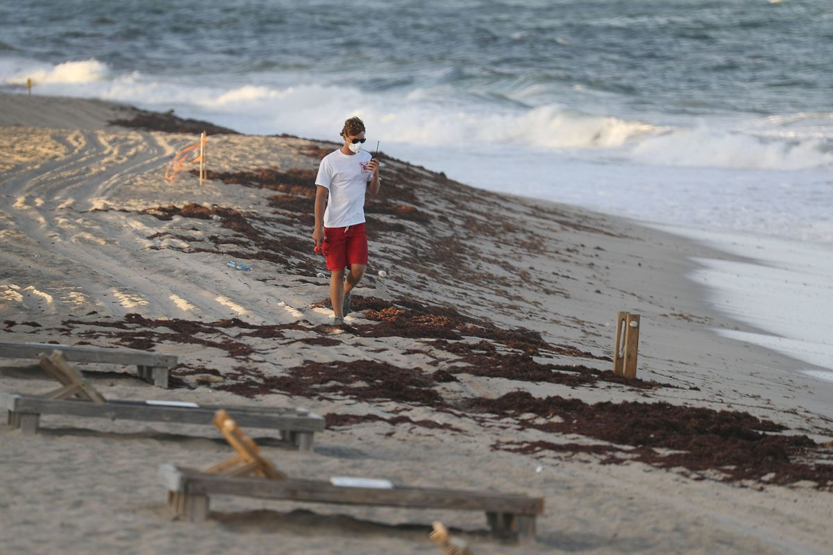 Red Tide Warnings Have Closed Some Miami Area Beaches