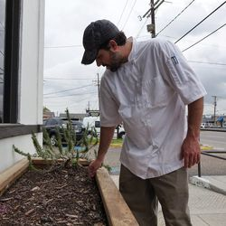 Adam Superneau inspects his rosemary and just-sprouting chard and kale.