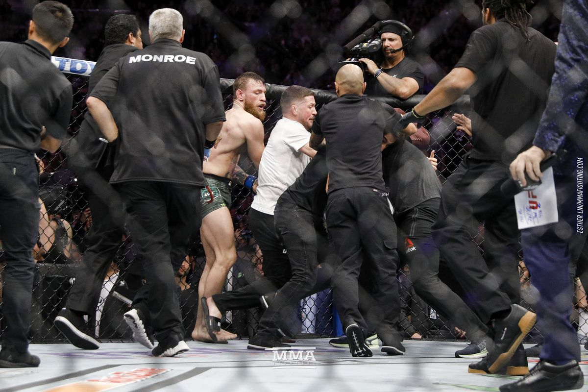 Image result for ufc brawl