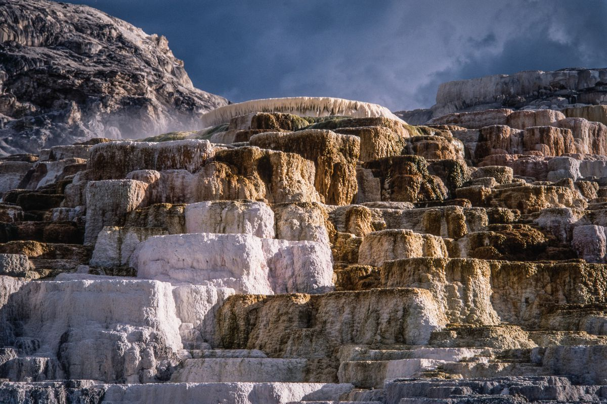 Colorful mineral formations of Palette Spring in the Mammoth Hot Springs in Yellowstone National Park in Wyoming, USA.