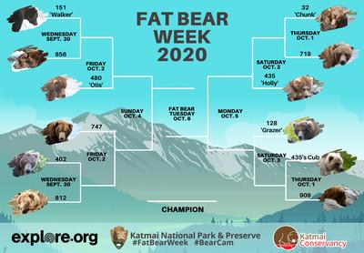13 fat bear week 2020 bracket draft 1601066484760 - Fat Bear Week is the only sport I care about now