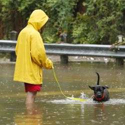 Charles Szul walks his dog through the water near his home during Tropical Storm Harvey in Houston on Tuesday, Aug. 29, 2017.