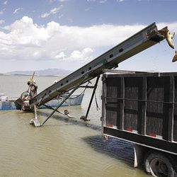 Members of Bill Loy's fishing crew use a conveyor belt to unload carp into a trailer in Utah Lake's Goshen Bay. The carp will be hauled to a mink farm where they will be ground up for feed.