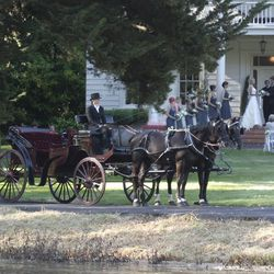 """Hackney Horse & Carriage: What girl didn't dream of a horse-drawn carriage at her wedding? Novato-based <a href=""""http://www.carriagerental.com/"""">Hackney Horse & Carriage</a> makes those dreams come true."""