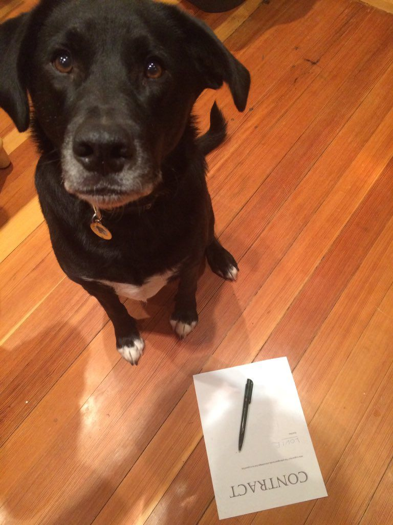 Louie Contract signing