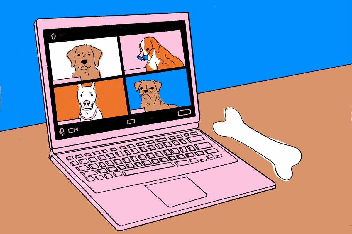 An illustration shows a Zoom call with dogs.