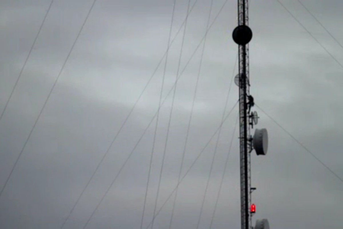 cell tower deaths