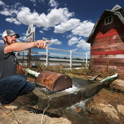 Luke Petersen, of Petersen Family Farm in Riverton, talks about his business and the algal bloom in Utah Lake on Tuesday, July 19, 2016.