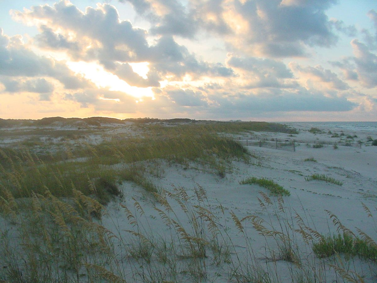 A sandy beach with grass. There is a sunset and the sky is orange and blue.