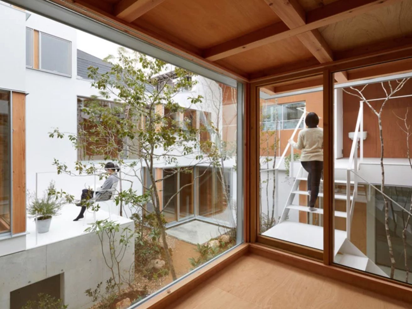 Modern Japanese house is serious courtyard goals