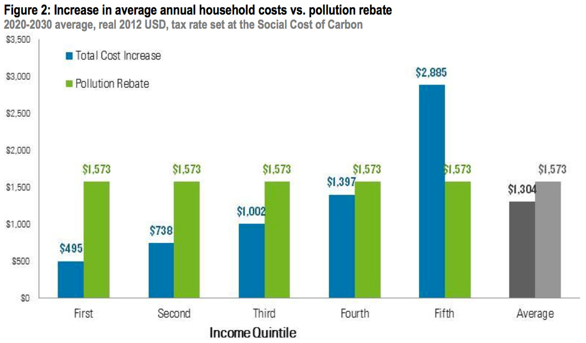 carbon tax rebate effects
