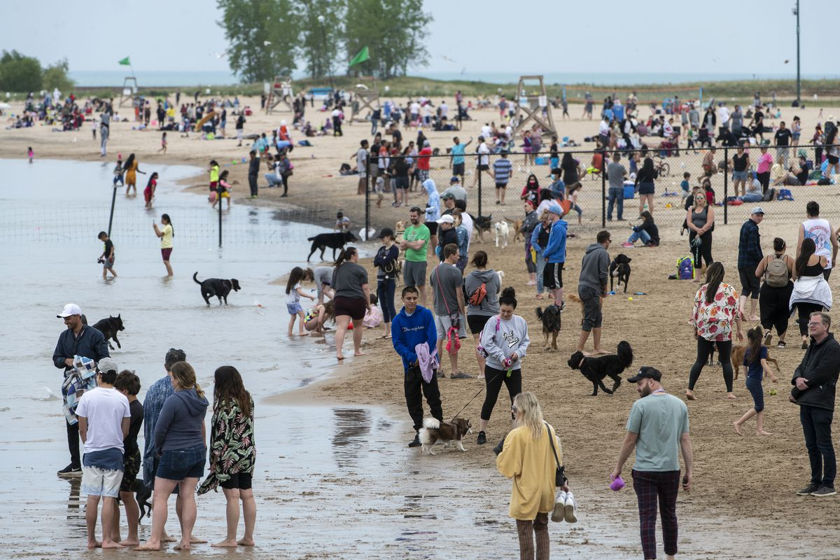 People play catch and let their dogs loose at the dog-friendly area of Montrose Beach on Monday, May 31, 2021.
