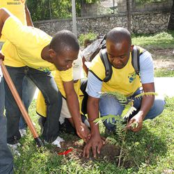 Colin Prosner, left, and Paul Henry Jean Baptiste plant a tree outside an LDS meetinghouse in Port au Prince, Haiti.