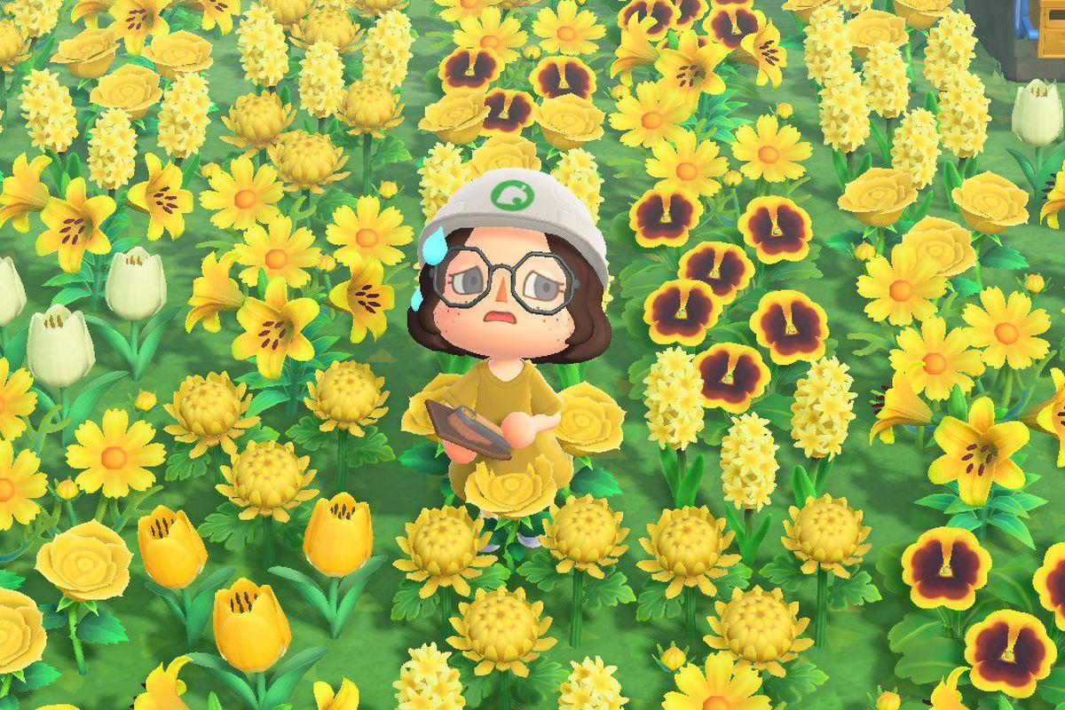 Animal Crossing New Horizons Island Planner Is A Fan Made Alternative Polygon