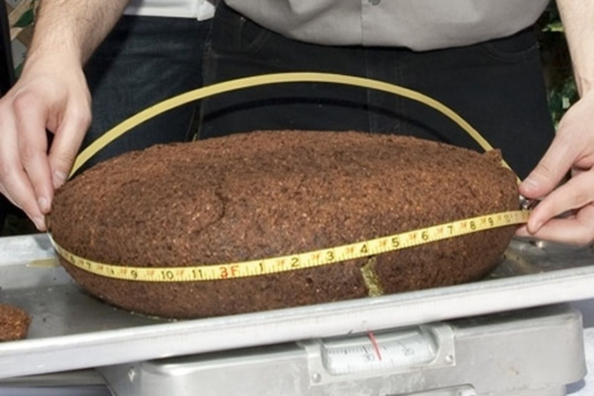 The World's Largest Falafel Ball