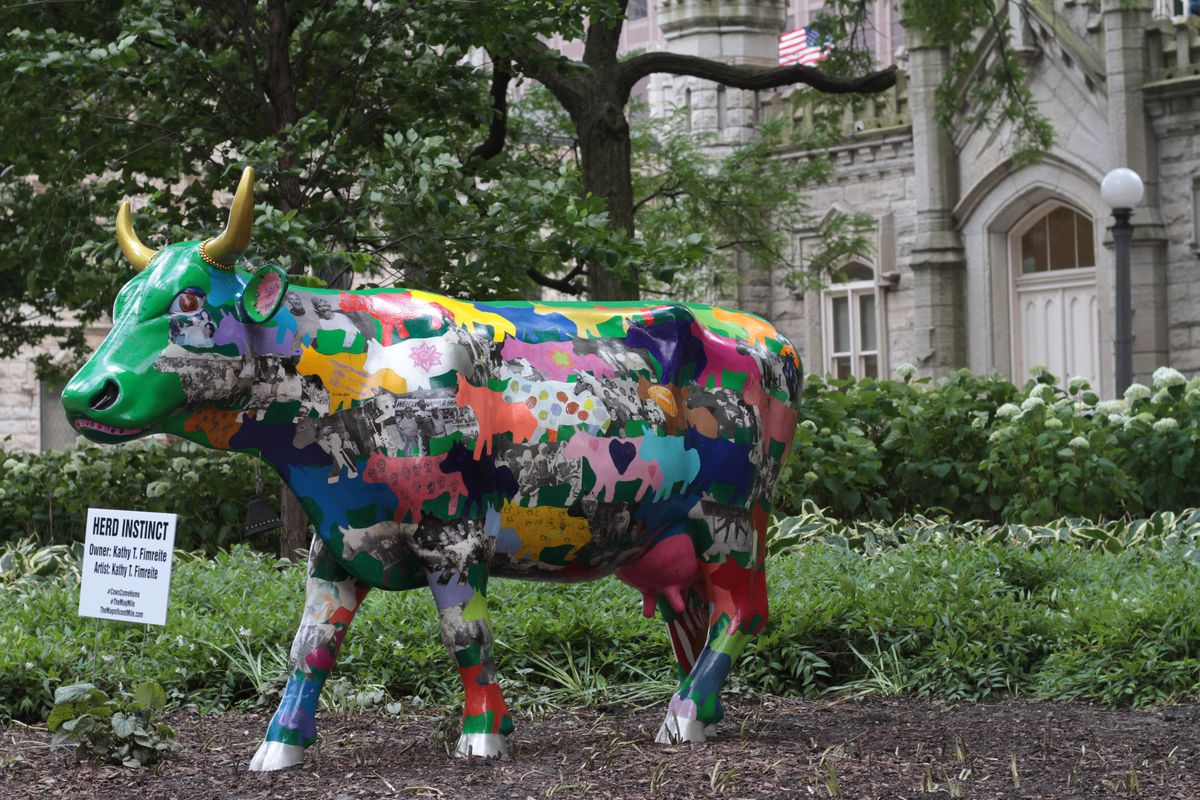 """For the average Chicagoan, a working knowledge of cows probably doesn't extend much further than the city's """"Cows on Parade"""" art installation in the summer of 1999."""