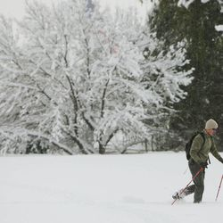 A cross-country skier moves through the fresh snow  in Bountiful  Sunday, Nov. 11, 2012.