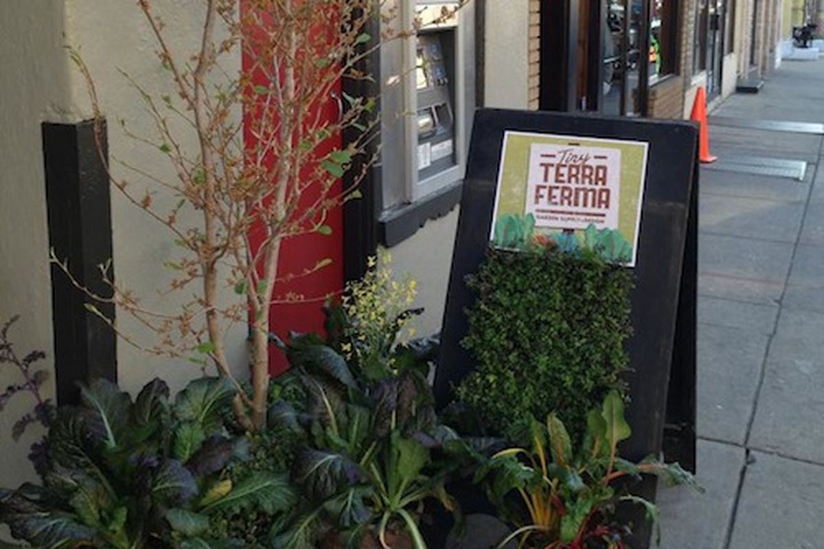 """Tiny Terra Ferma is one of Manayunk's new stores. Image credit: <a href=""""https://www.facebook.com/TinyTerraFerma"""">Facebook/Tiny Terra Ferma</a>"""