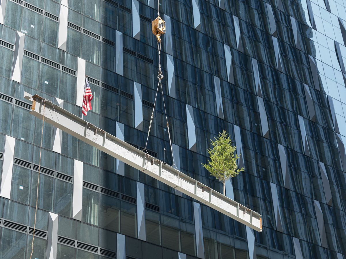 A flag and a tree sit on a steel beam, held aloft by cable in front of a wall of glass windows.