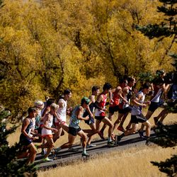 The 5A boys state cross-country championship race is held at Soldier Hollow in Midway on Thursday, Oct. 22, 2020.