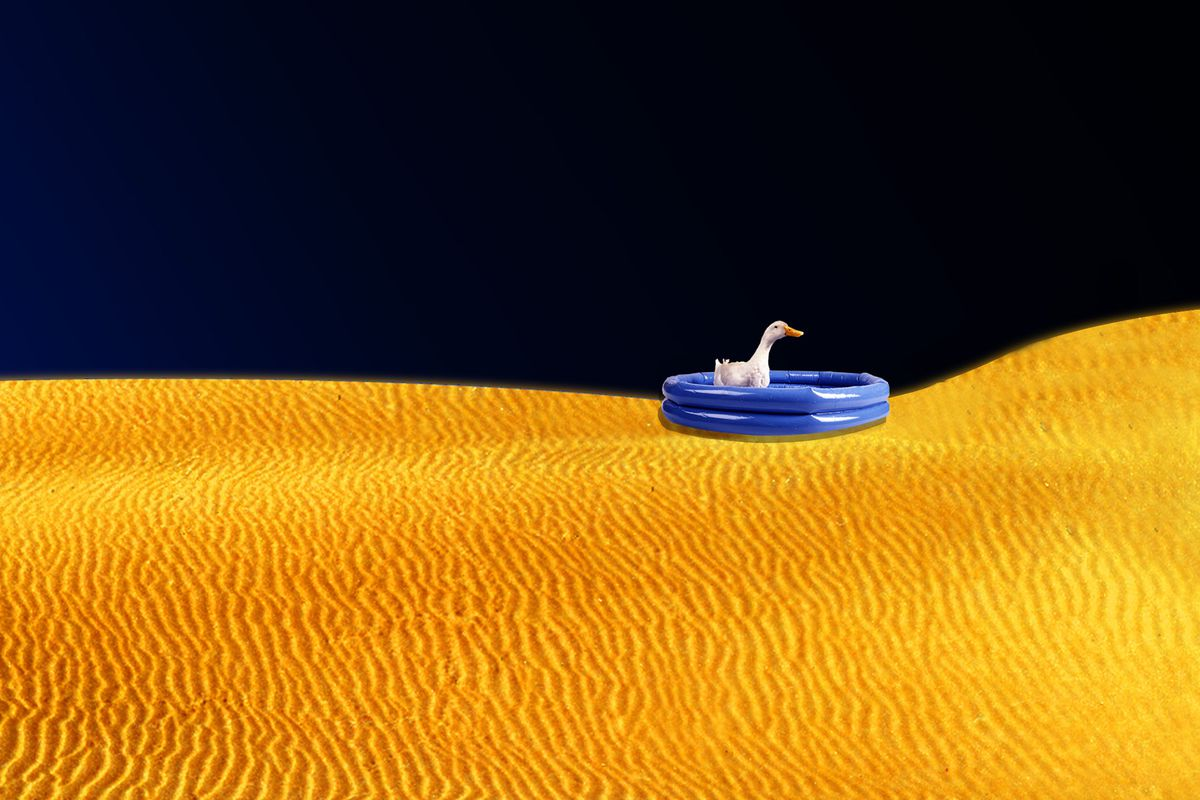 Duck in a life raft on a sand dune