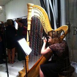 Harpist at Pamela.