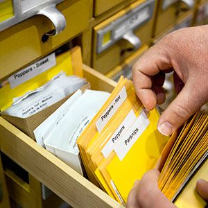 <p>Card-catalog drawers that once dispensed information about where to find books by Edgar Allan Poe and Dorothy Parker now hold labeled packets of heirloom seeds, from artichokes to zinnias.</p>