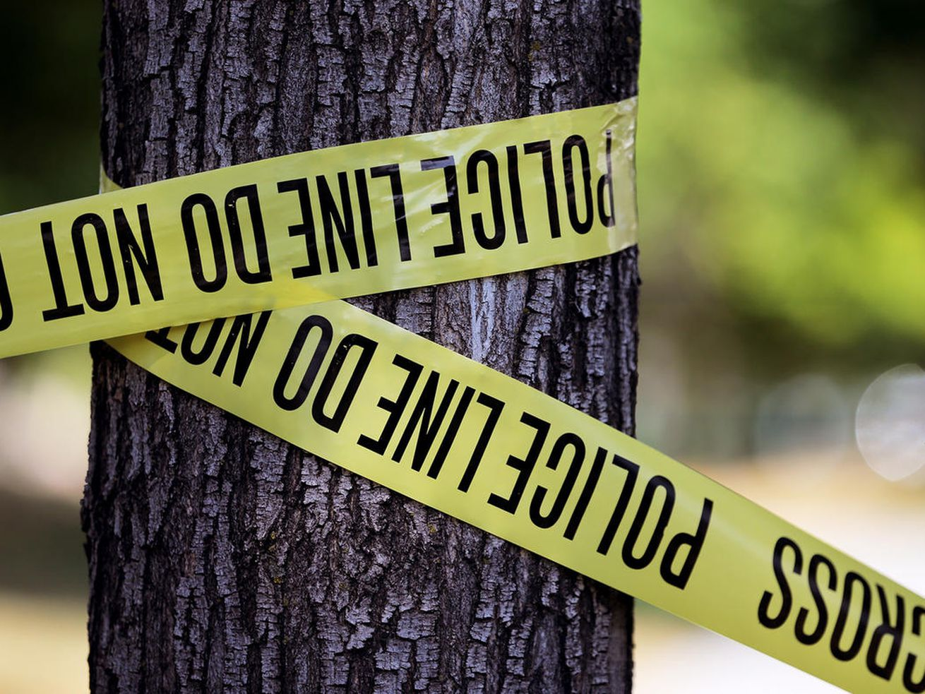 Police tape is wrapped around a tree as West Valley City police investigate a fatal shooting at near 4274 W. 4695 South on Sunday, July 9, 2017.