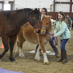 Ellie Kanz, 11, of Richmond, Mass. right, joins her mother Rachel Kanz, left, and friend Carlie Roberts, 10, as they take part in an exercise during a Berkshire HorseWorks open house on Saturday, March 18, 2017, at Berkshire Equestrian Center in Richmond, Mass