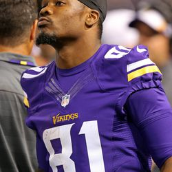 Aug 9, 2013; Minneapolis, MN, USA; Minnesota Vikings wide receiver Jerome Simpson (81) looks on from the sidelines during the third quarter against he Houston Texans at the Metrodome. The Texans won 27-13.