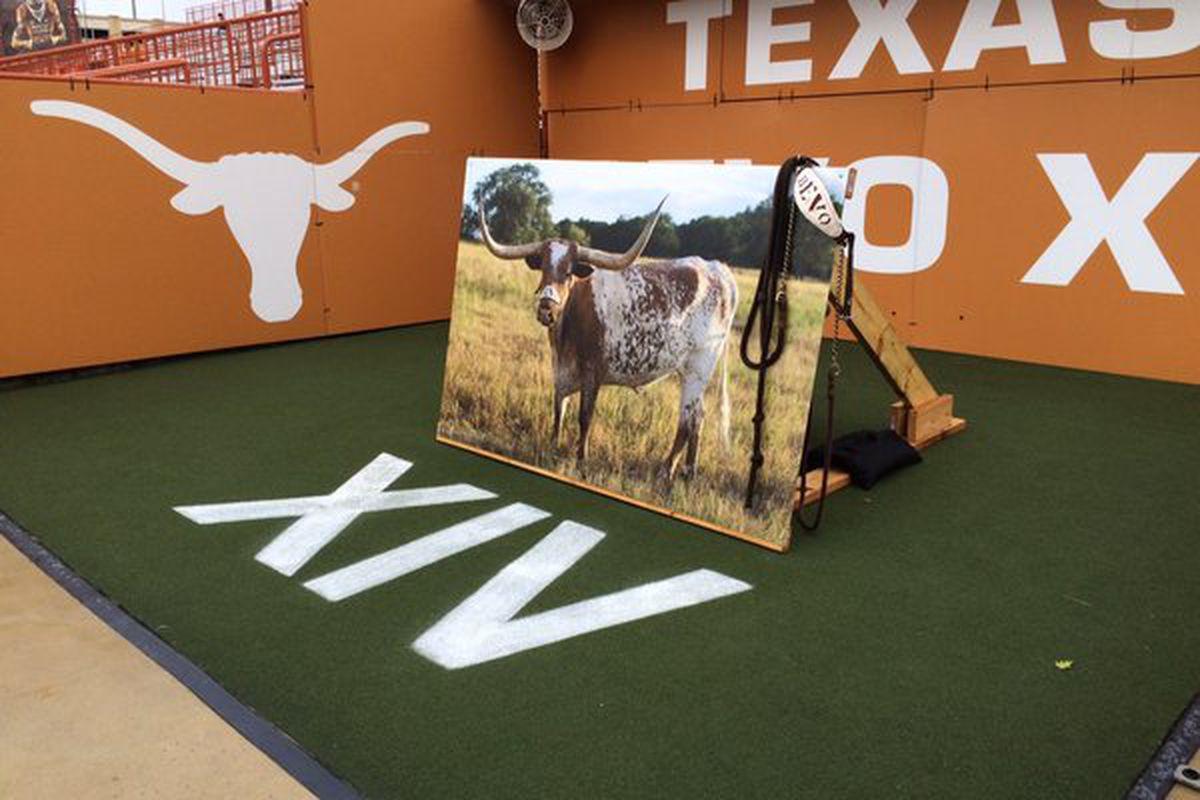 Texas Longhorns to debut Bevo XV Sept. 4 against Notre Dame
