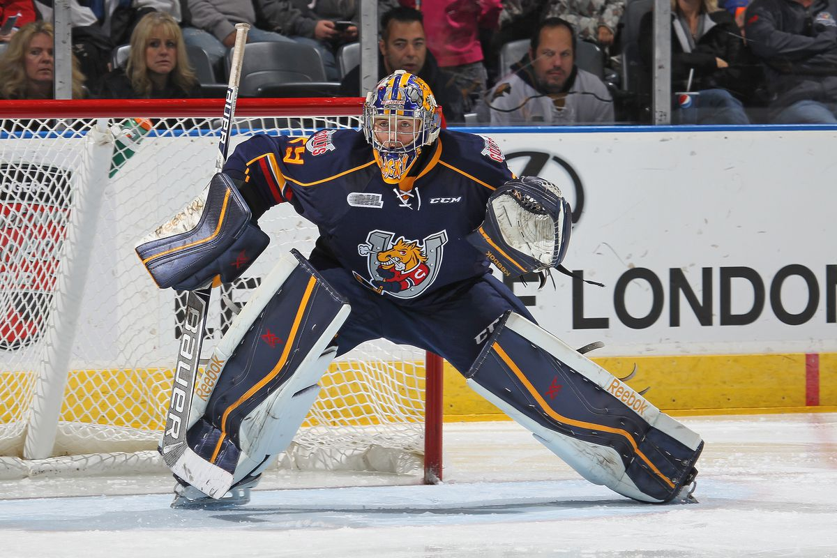 Mackenzie Blackwood #29 of the Barrie Colts looks to make a save against the London Knights in an OHL game at the Budweiser Gardens on October 10, 2014 in London, Ontario, Canada. The Colts defeated the Knights 4-3.