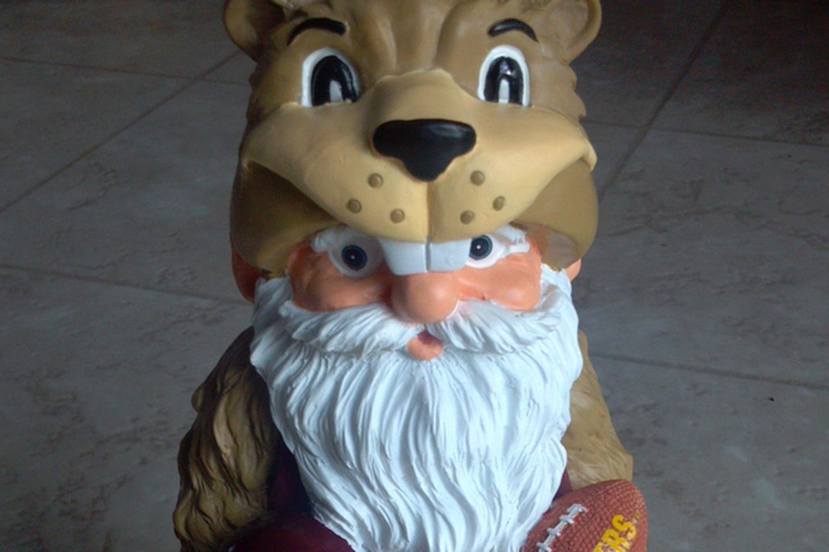 Gopher Gnome