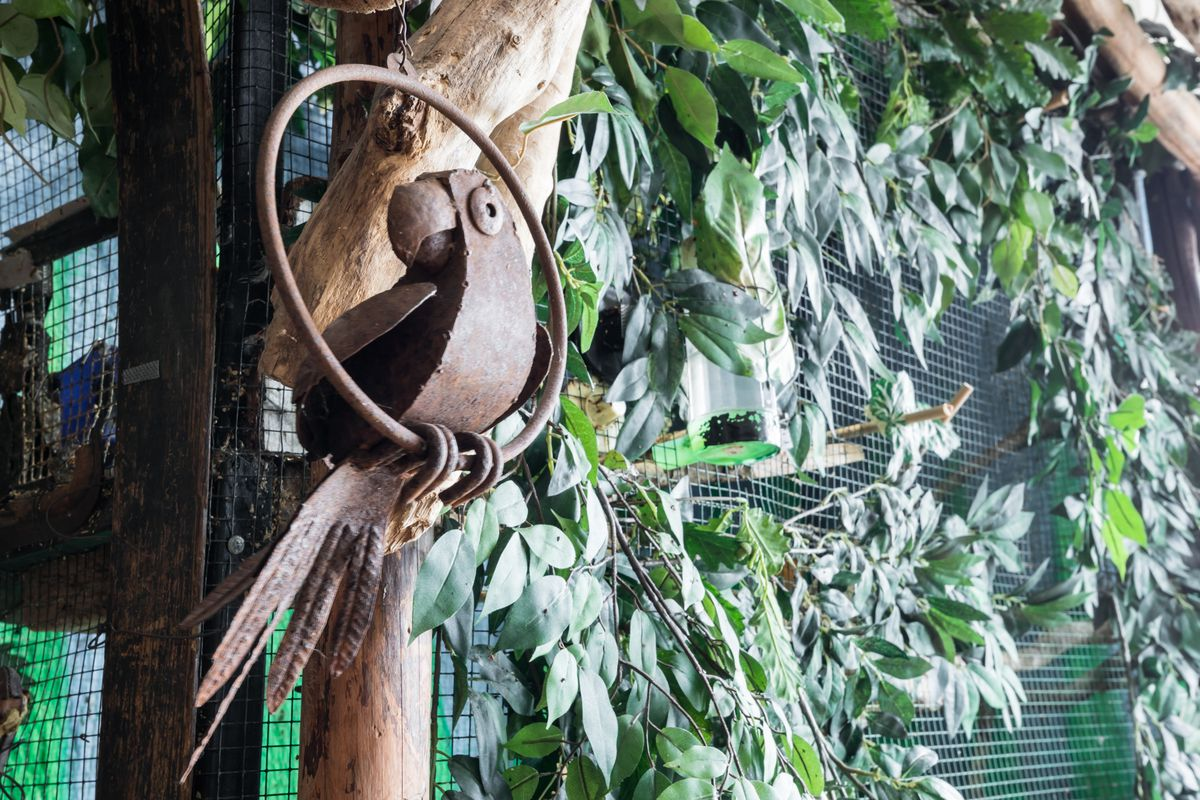 A detail of a hanging ornamental sculpture of a bird in a ring. The sculpture is hanging off of a tree with leafy branches.