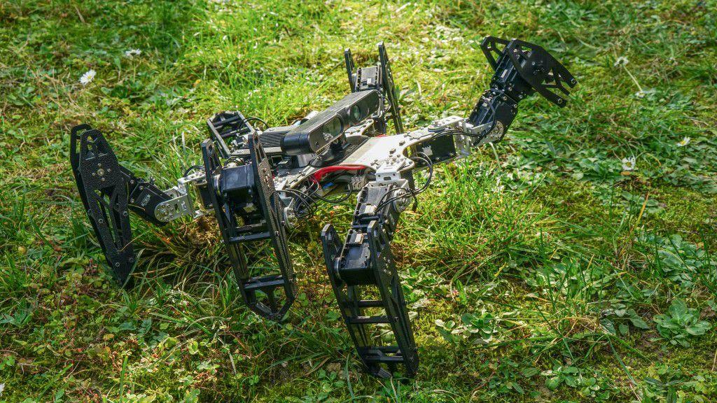 Robot Adaptation Algorithm
