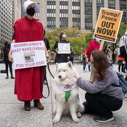 Sarah McIntosh, left, her dog Tunnu, and Jeanine Ross, right, attend the Women's March.