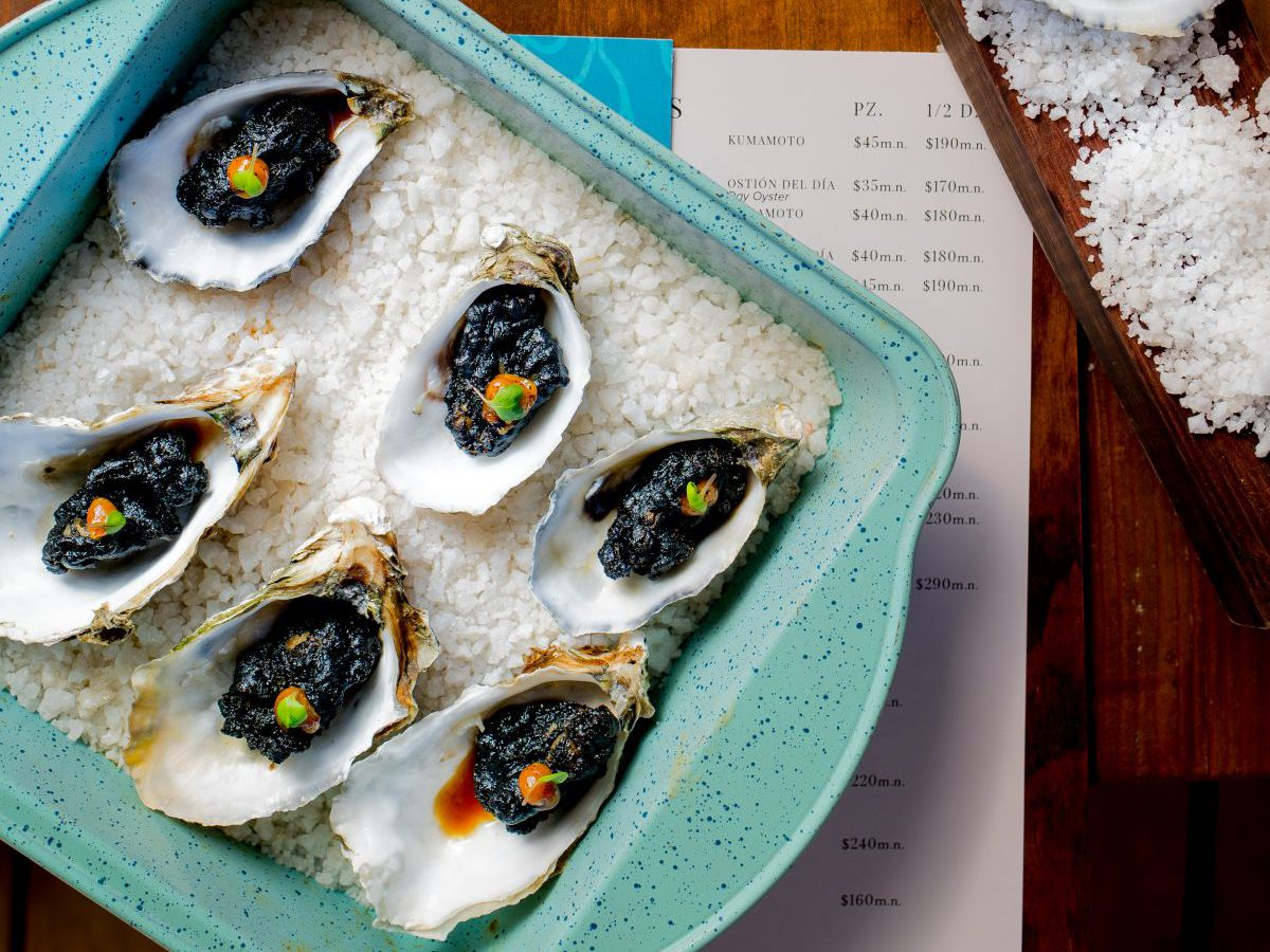 From above, a tray of six dressed oysters on a bed of ice sits on top of a wooden-backed menu, alongside a plank of more oysters on salt