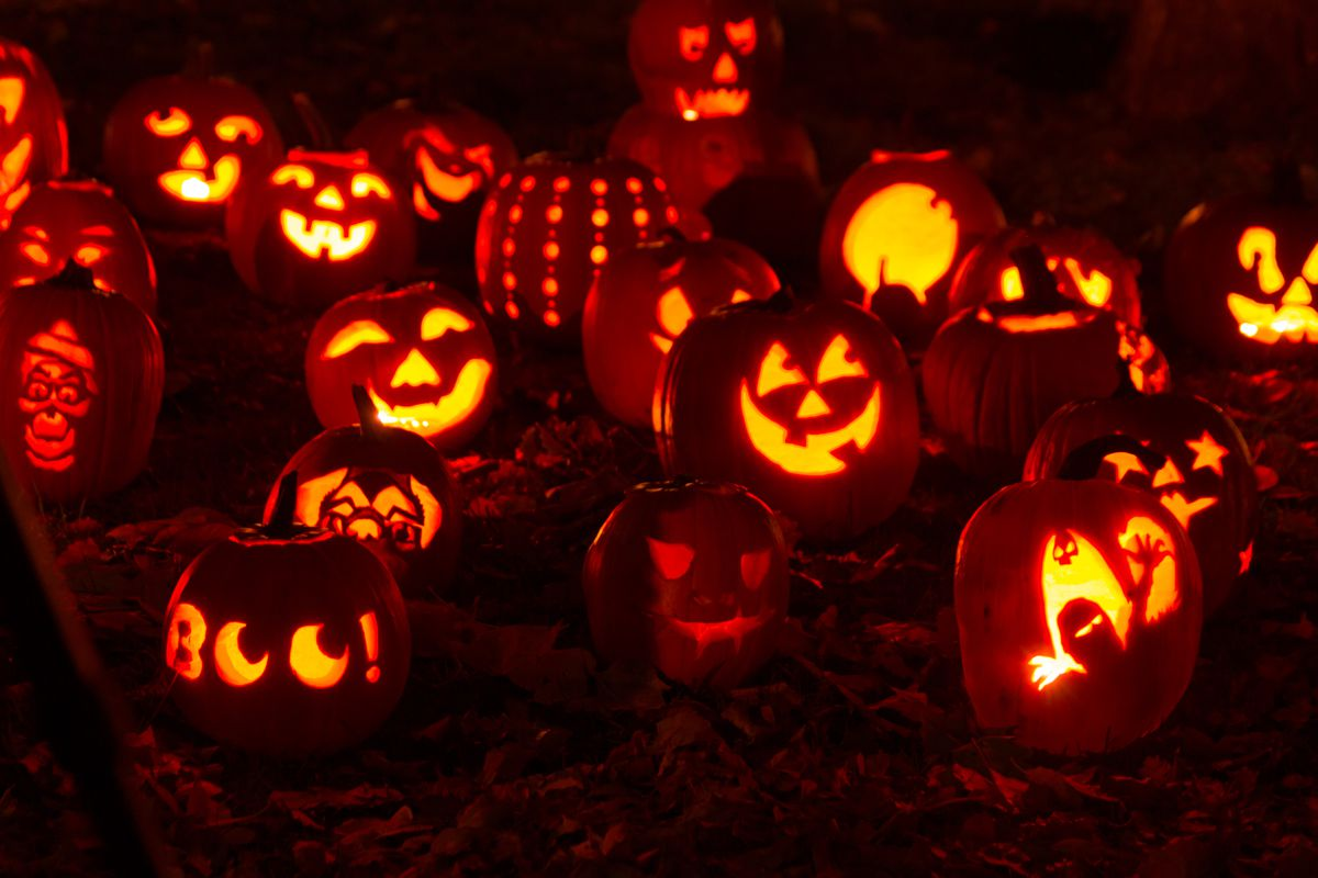 A stock photo of a bunch of carved jack-o-lanterns on a dark night