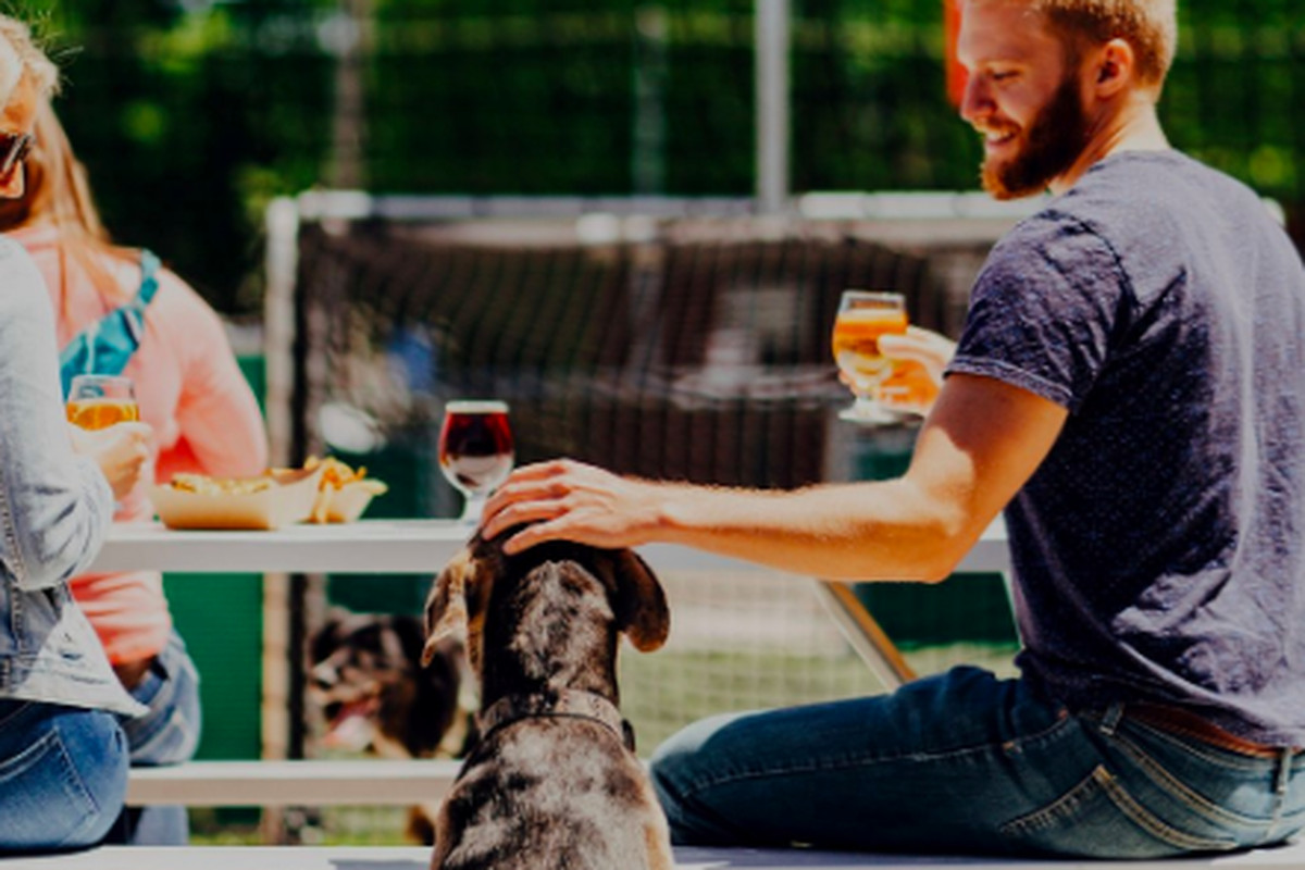 New North Minneapolis Restaurant Will Cater to Dogs and Their People